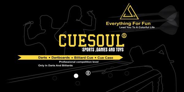 Cuesoul Pool Cue and Cuesoul Dart